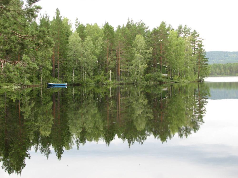 See mit sich spiegelndem Wald